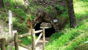6457_imag_2310_mina_la_jayona_pasillos CAMPIÑA